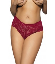 Sheer Red Floral Stretch Lace Shorties